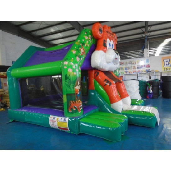 Leão De Chácara Da Tobogã Dianteira Do Tigre